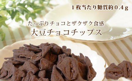 低糖質チョコチップ