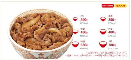 牛丼 ジャンボサイズ